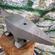 20kg solid steel anvil